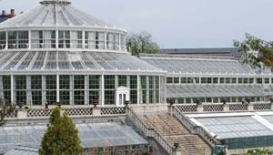 Botanical Gardens, Copenhagen