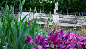 Jardin Tuileries Paris