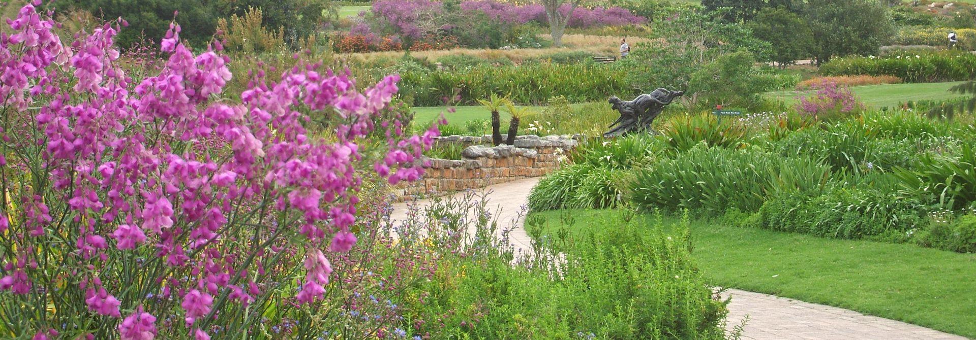 Kirstenbosch Botanical Gardens Hero